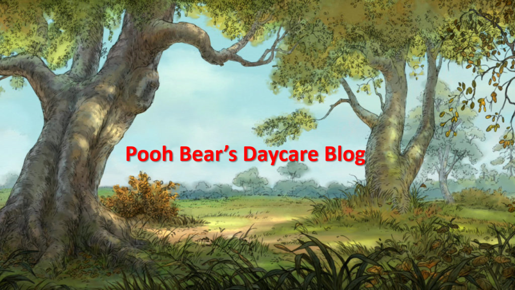 pooh bears daycare blog post